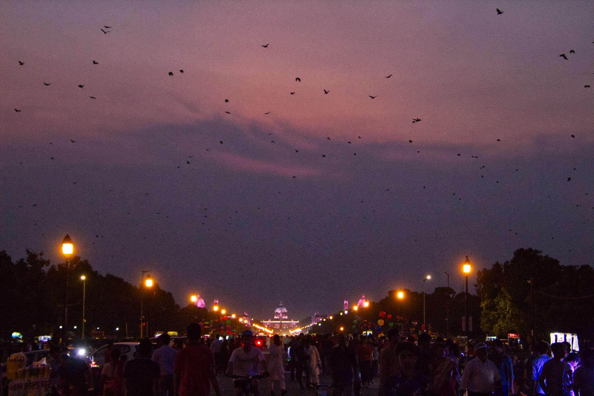 Abends in der Rajpath Area in Neu-Delhi