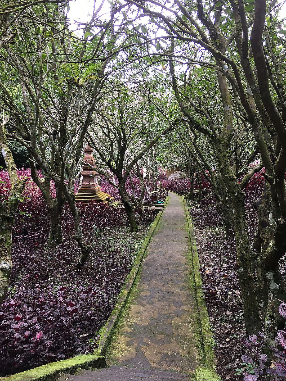 Garten bei den Höhlen in Vieng Xai