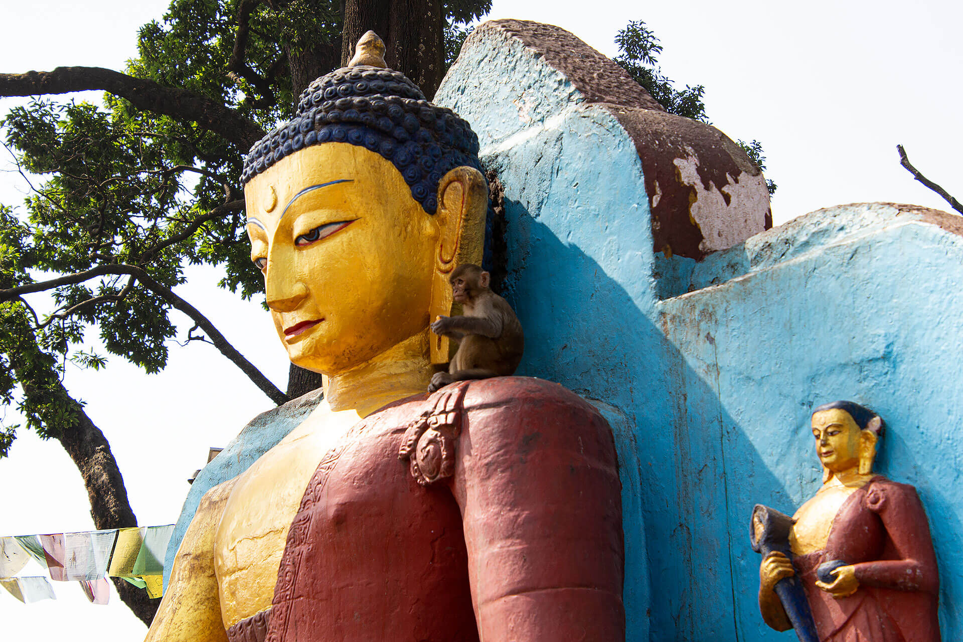 Buddha mit Affe