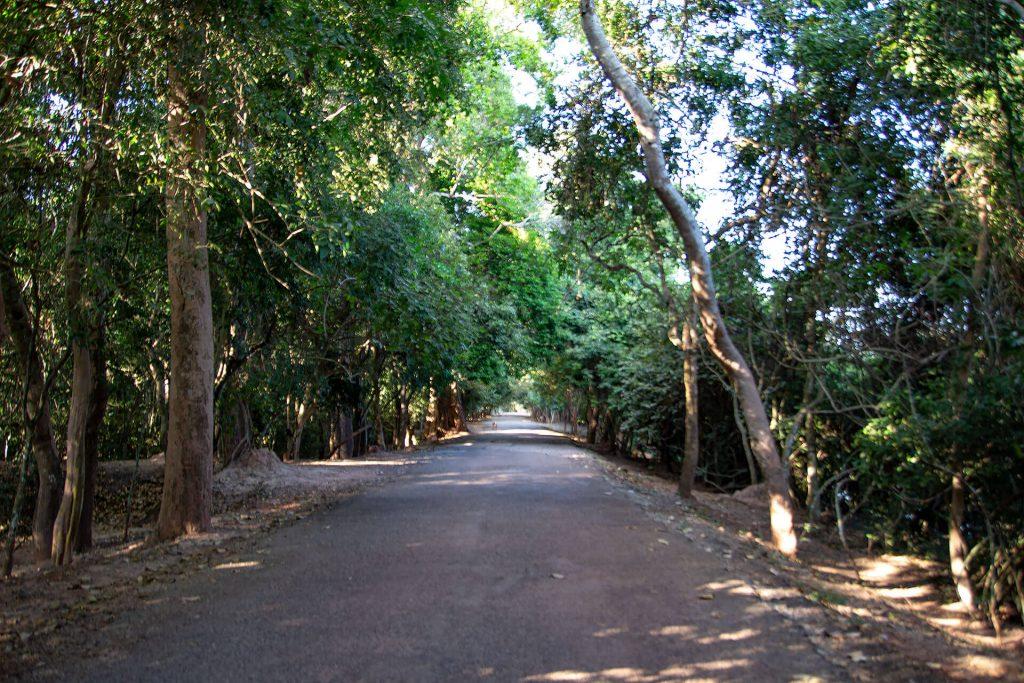 Angkor Wat - Straße