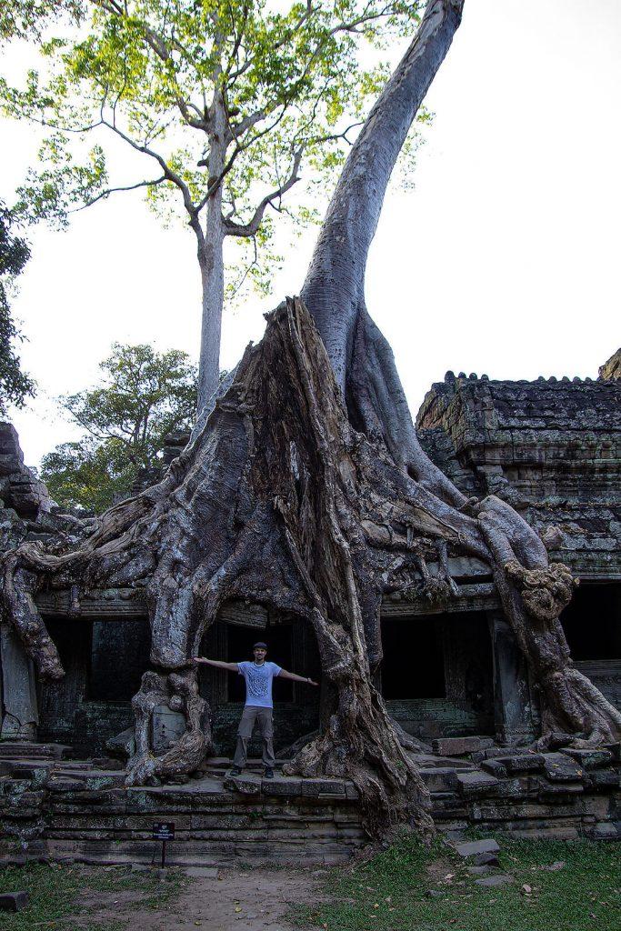 Berti im Baum beim Preah Khan