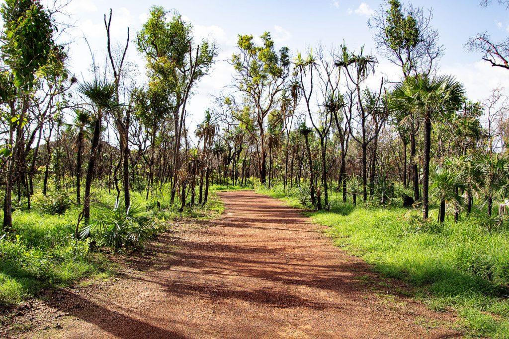 Weg nach Ubirr im Kakadu Nationalpark