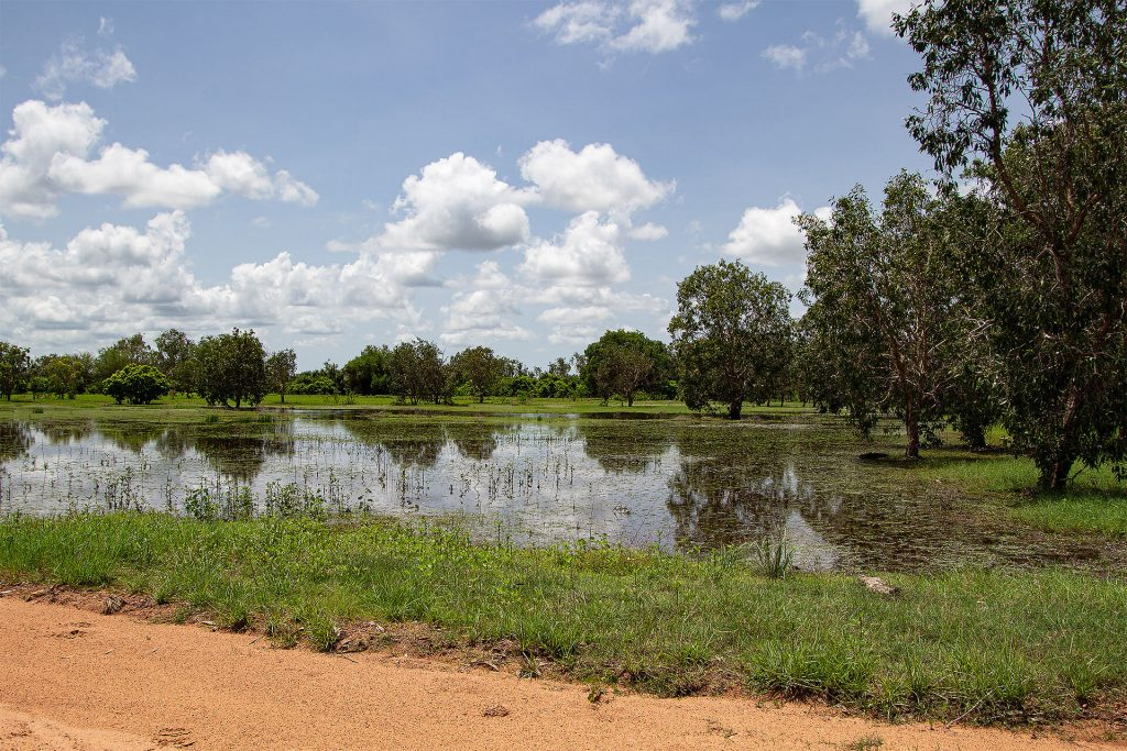 Feuchtgebiet kurz vor dem Kakadu Nationalpark