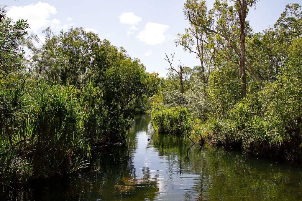 Fluss bei den Edith Falls