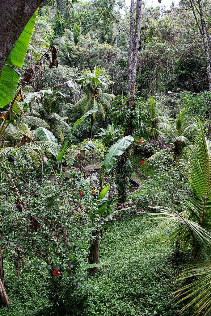 Garten bei der Goa Gajah Höhle