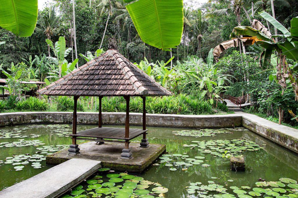 Teich bei der Goa Gajah Höhle