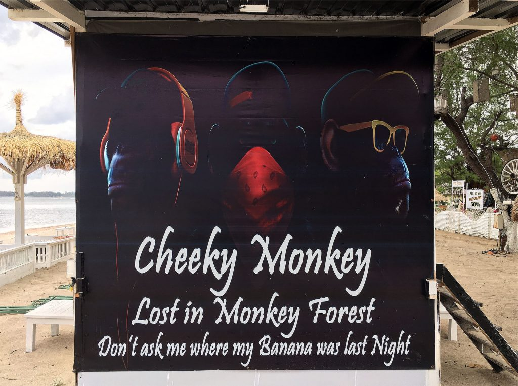 Cheeky Monkey - Lost in Monkey Forest