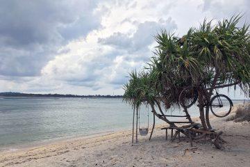 Baum mit Fahrrad am Strand