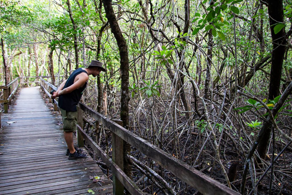Berti im Daintree Rainforest