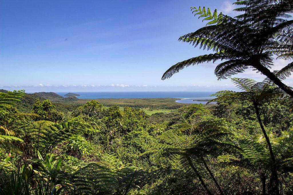 Aussichtspunkt auf Cape Tribulation