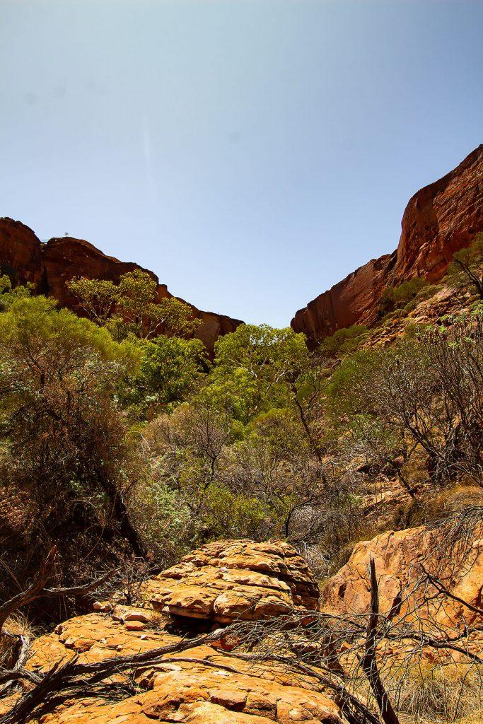 Im Inneren des Kings Canyons