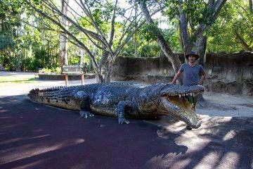 Große Krokodilstatue