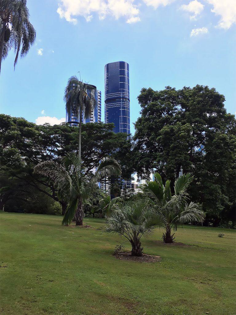 Botanischer Garten in der Innenstadt von Brisbane