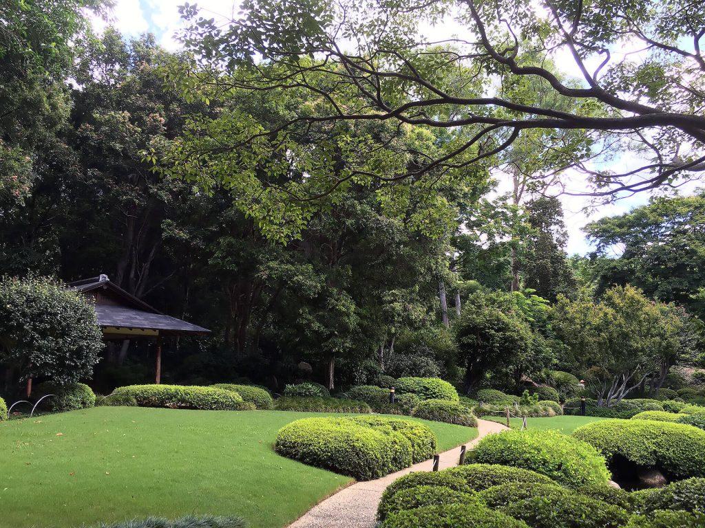Botanischer Garten Brisbane