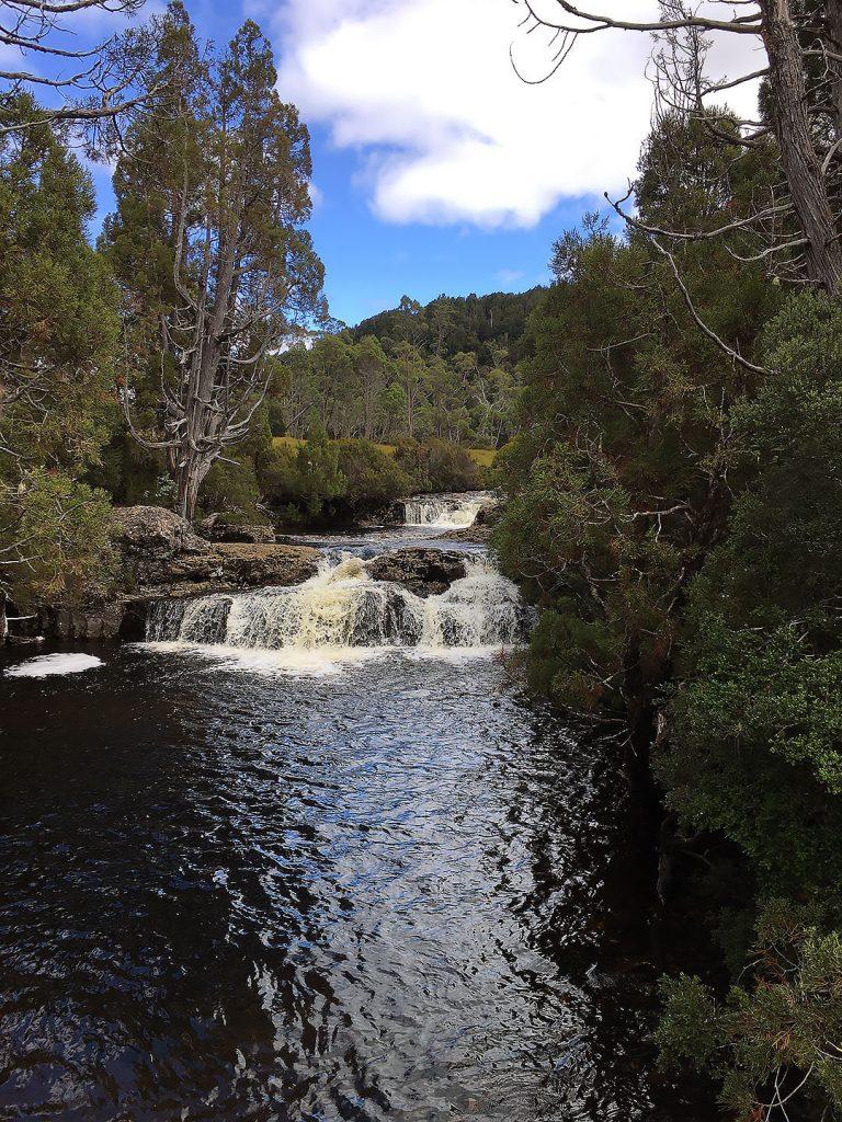 Pencil Pine Creek im Cradle Mountain Nationalpark