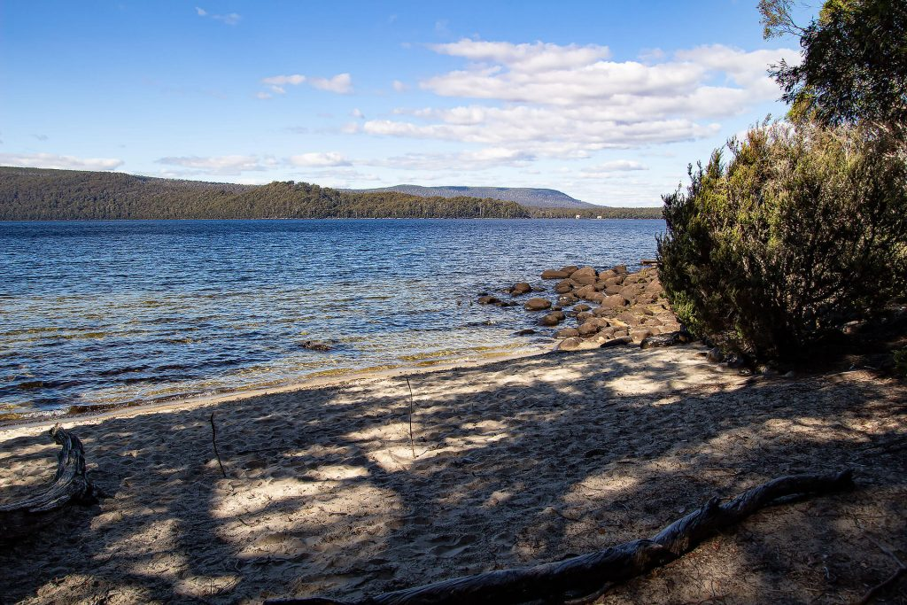 Lake St. Clair in Tasmanien