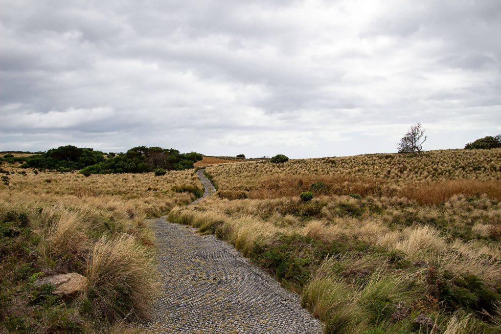"""The Nut"" in Tasmanien"